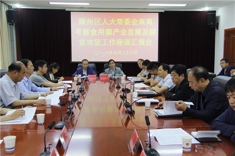 耀州区人大来我区考察学习食用菌产业发展及脱贫攻坚先进经验